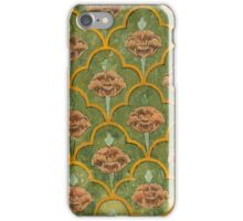 Jaipur Walls iPhone Case/Skin