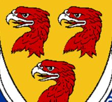 Coat of arms (family crest) for last-name or surname Nicholson (Scotland) . Heraldry banner for your name. Sticker
