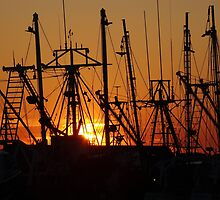 Rigging at Sunset by Kelly Chiara