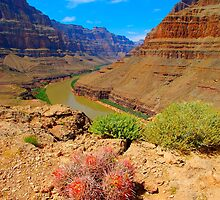 Grand Canyon by Chuck Harlins