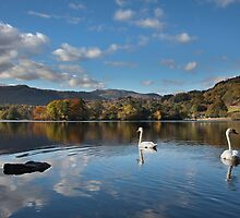 Rydal Water Autumn by SteveMG