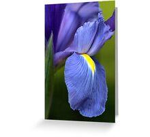 Creating Iris Greeting Card