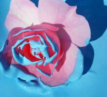 Rose in Blue Sticker