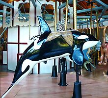 Carousel Orca by MischaC