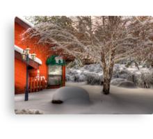 Winters Lace Canvas Print