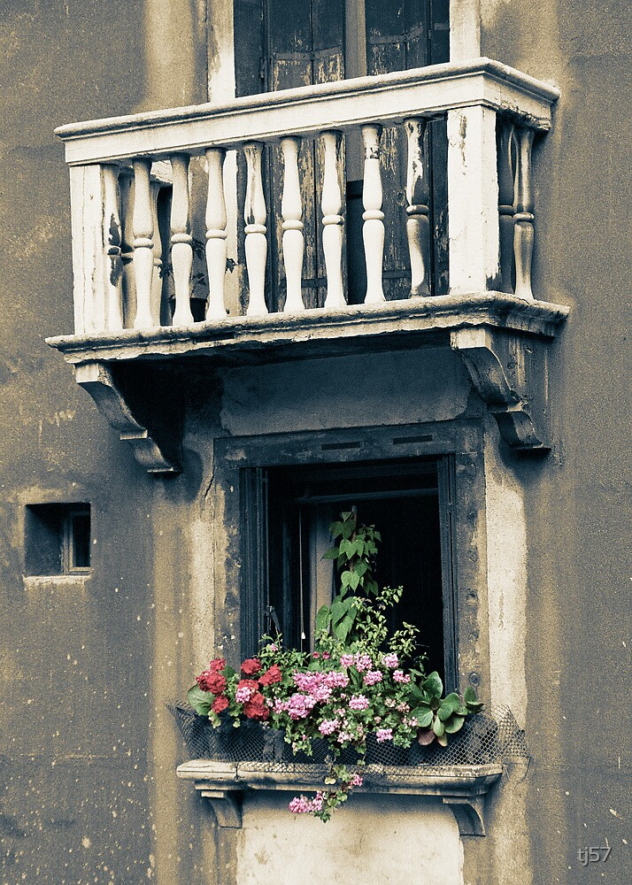 Venice: windows, balcony and flowers by tj57