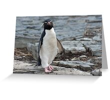Look of distain Greeting Card