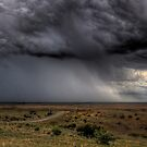 The Rain, Mainly On The Plain by Rod Wilkinson