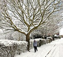 Winter wonderland in England by chris-csfotobiz