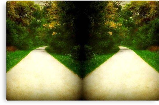 Crossing Paths ©  by Dawn M. Becker