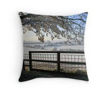 Jack Frost's been out and about... Throw Pillow