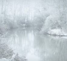 Winter cold.. by Yool
