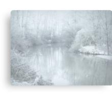 Winter cold.. Canvas Print