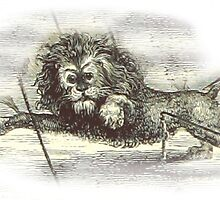 Weird Creepy Old Lion by Vintage Designs