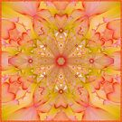 Sunny Flower Pattern by Elaine Bawden