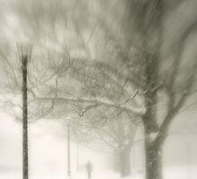 Winter by kimmac