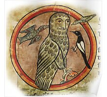Medieval Gothic Owl created in 1230AD Poster
