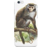 Wild Monkey Vintage illustration iPhone Case/Skin