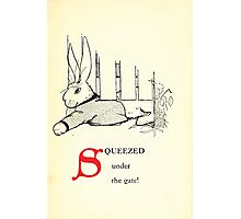The Tale of Peter Rabbitt Beatrix Potter 1916 0019 Squeezed Under the Gate Photographic Print