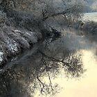 Winter Clarity by Stan Owen