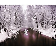 Peace on Earth (card) Photographic Print