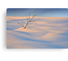 In The Bleak Mid-Winter Canvas Print