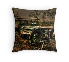 Bull Catcher I Throw Pillow