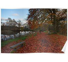 Reflections, Lumsdale Mill Pond. Poster