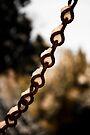 Snowy chain by David Isaacson
