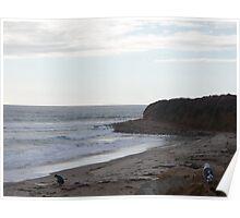 California Coast #10 Poster
