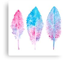 Elegant vector background with watercolor drawing feathers. Metal Print