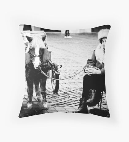 OnePhotoPerDay Series: 341 by L. Throw Pillow