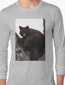 Brush Tail Possum Long Sleeve T-Shirt