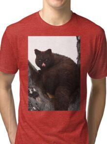 Brush Tail Possum Tri-blend T-Shirt
