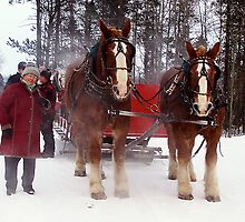 Christmas In the Rockies by Nancy Richard