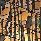 Glass Sunset by Kasia Nowak