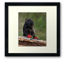Actually, No ...I Don't Share / Black Eastern Chipmunk Framed Print