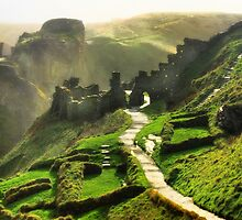 Tintagel Castle by Trudi's Images