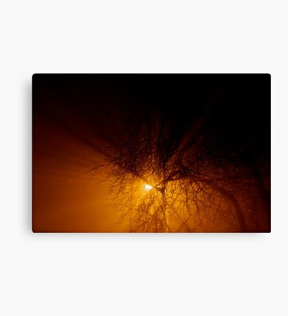 All upon a foggy night... Canvas Print