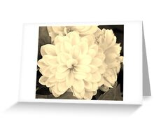 Full Monochrome Flowers Greeting Card