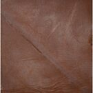 2D Photo-sampled Faux Brown Leather-effect by Skye Ryan-Evans
