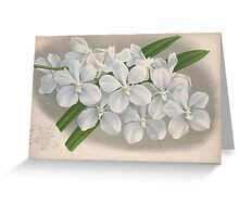 Iconagraphy of Orchids Iconographie des Orchidées Jean Jules Linden V4 1888 0074 Greeting Card