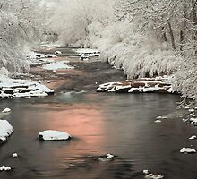 Clear Creek, Golden Colorado by Teresa Smith