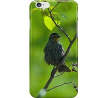 Early Arrivals iPhone Case/Skin