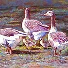 The Gaggle by Lynda Robinson