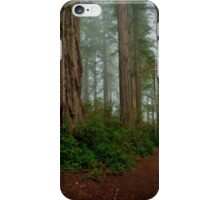 Renewed Spirit iPhone Case/Skin