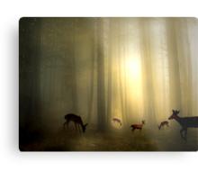The Magic Of Sunrise Metal Print