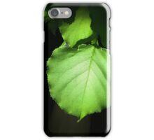 Backlit apricot leaf iPhone Case/Skin