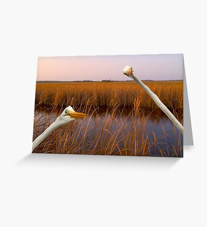 """""""Birds Eye View"""" - great egrets sneak into the picture Greeting Card"""