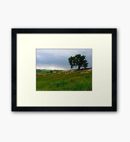 Blue Mounds State Park Framed Print